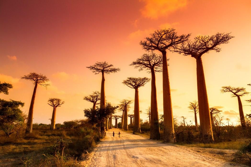 Solnedgång på Madagaskar